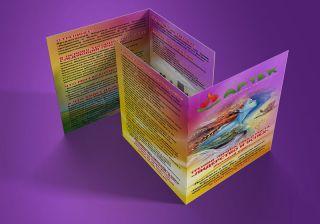 Дизайн буклетов примеры.